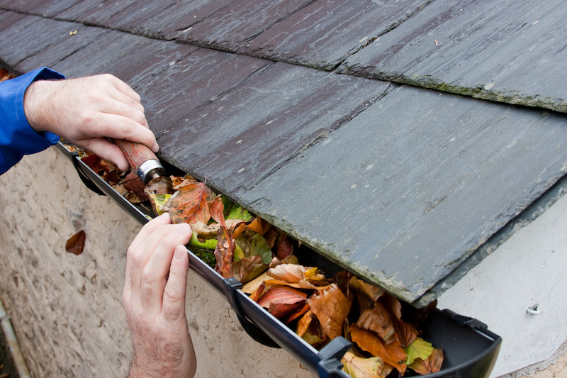 Why Gutter Cleaning Matters